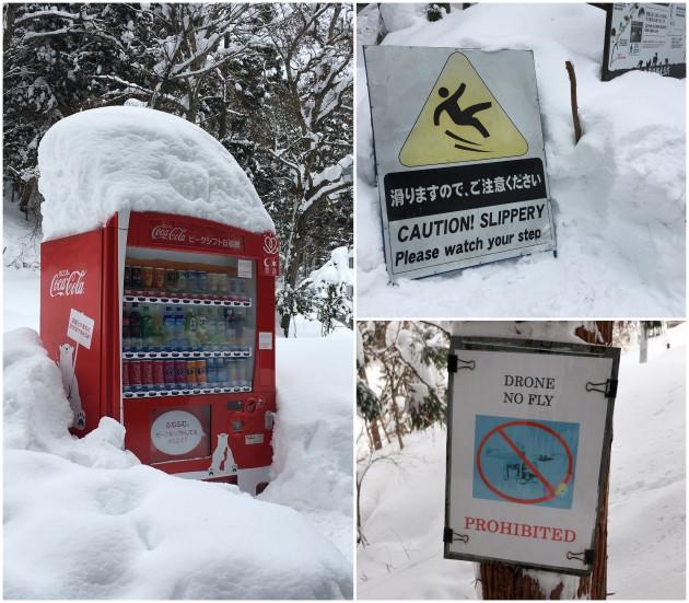 nagano-snow-monkey11